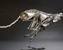 andrew_chase_robotic-animals-cheetah