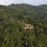 Detached From The Ground House In The Canopy Of Trees